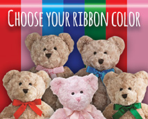 When choosing your  Teddy Bear remember you can personalize it with the color of the bow.