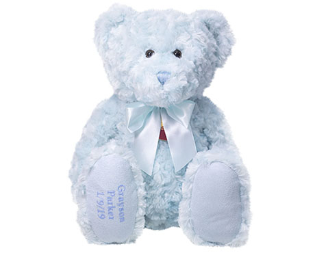 BLUE TEDDY LOW RES