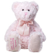 PINK TEDDY LOW RES